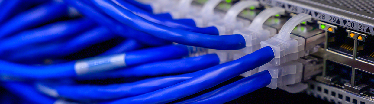 ethernet cables and a network switch